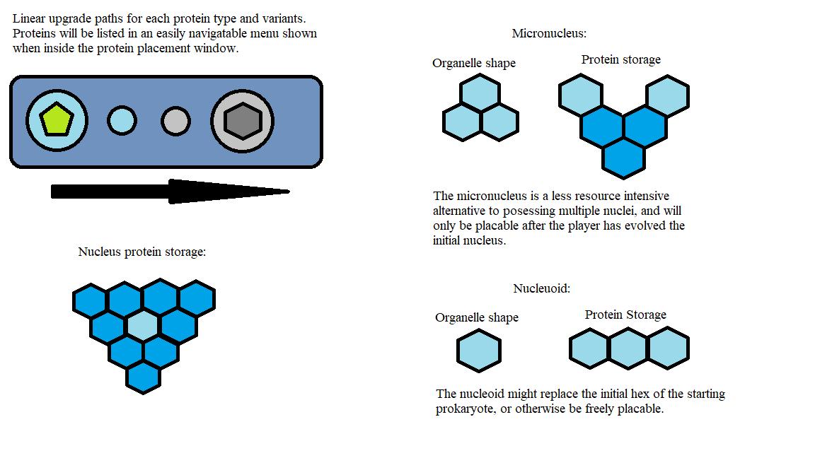 ProteinStorage2